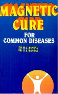 Magnetic Cure for Common Diseases