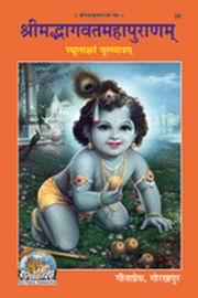 Essay on ved vyas in sanskrit