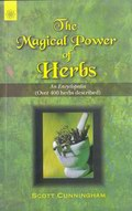 The Magical Power of Herbs