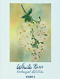 White Roses (Enlarged Edition) Part I