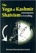 The Yoga of Kashmir Consciousness Shaivism is Everything