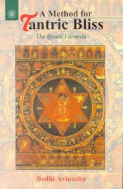 A Method For Tantric Bliss, Boodhi Avinasha, TANTRA Books, Vedic Books