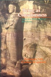 Being as Consciousness, Fernando Tola, Carmen Dragonetti, A TO M Books, Vedic Books