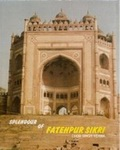 Splendour of Fatehpur Sikari