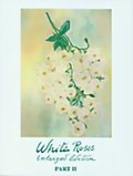 White Roses (Enlarged Edition) Part II